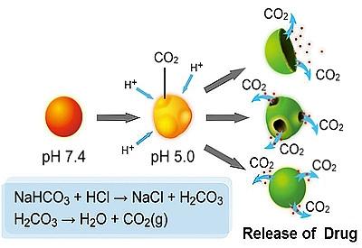 由於碳酸氫鈉於酸性環境時會與H+反應產生二氧化碳,PLGA中空微球會因為內部產生了大量的二氧化碳,進而脹破PLGA殼層,使所攜帶的模擬藥物Cy5能快速大量的釋放