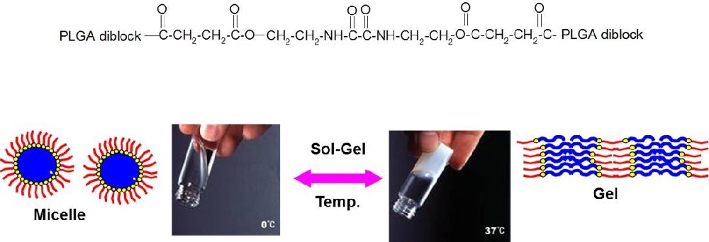 ITRI BOX hydrogel 化學結構式,與溫度感應特性