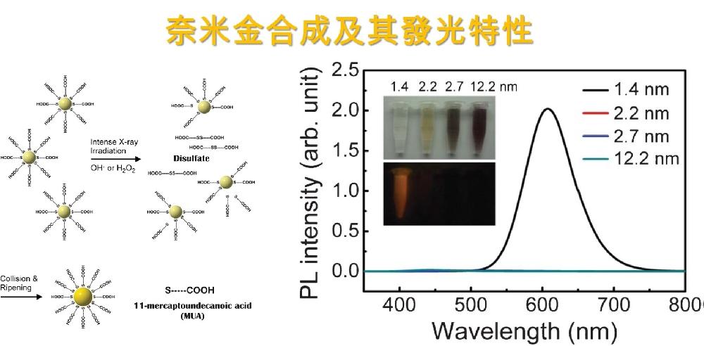 奈米金粒子合成