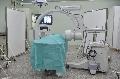 試驗豬隻移動式X光機檢查