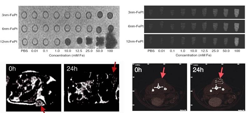 FePt奈米粒子的顯影效果
