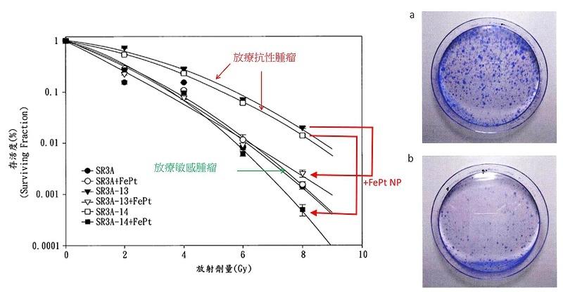FePt奈米粒子的放療增敏效果