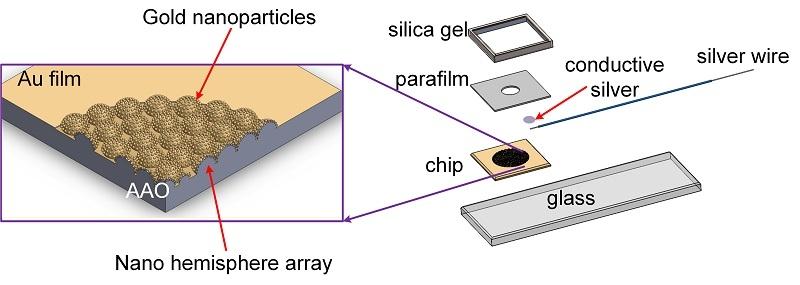 感測器結構