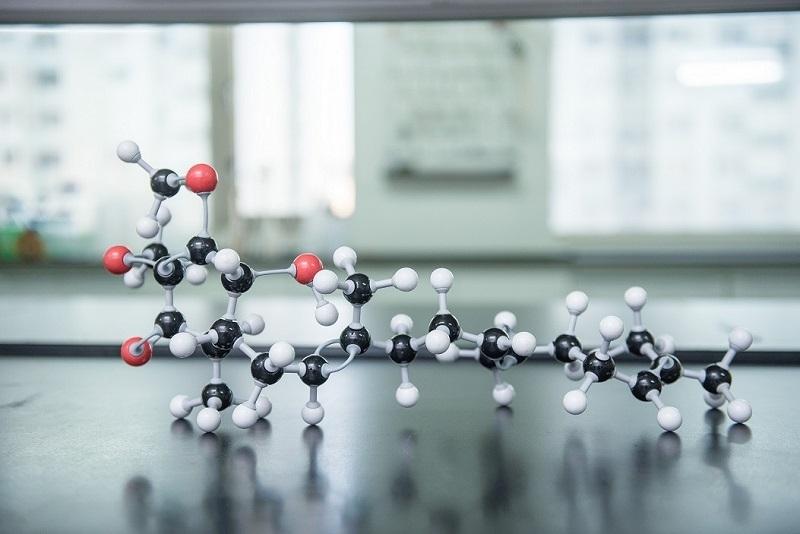 Hocena(Antroquinonol)分子結構