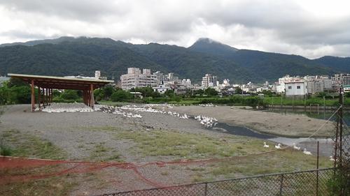 礁溪養鴨場