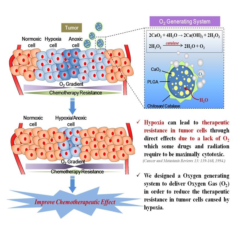 過氧化物控制釋放氧氣運用於治療抗藥性癌症示意圖