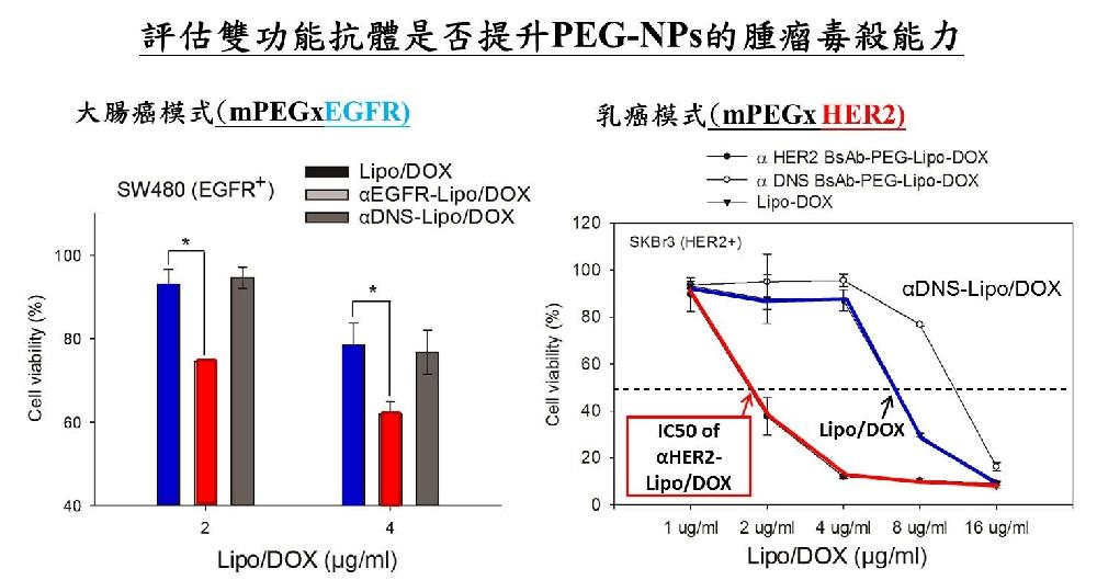 雙功能抗體修飾上臨床癌症用藥(Lipo/DOX)後,提升藥物的毒殺癌細胞的能力