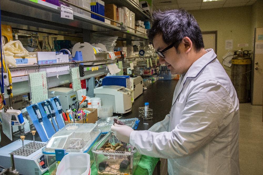 樹突細胞疫苗施打