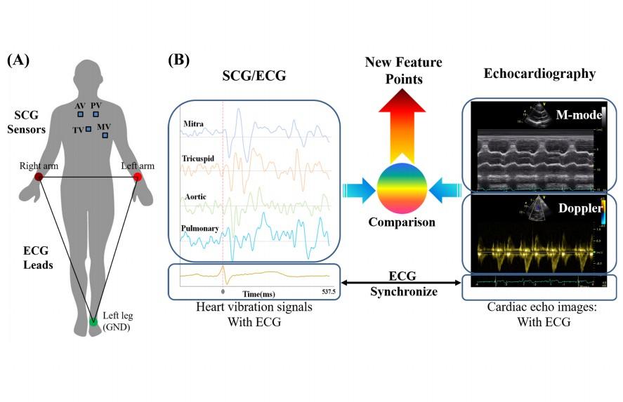 心震圖與超音波影像比對流程