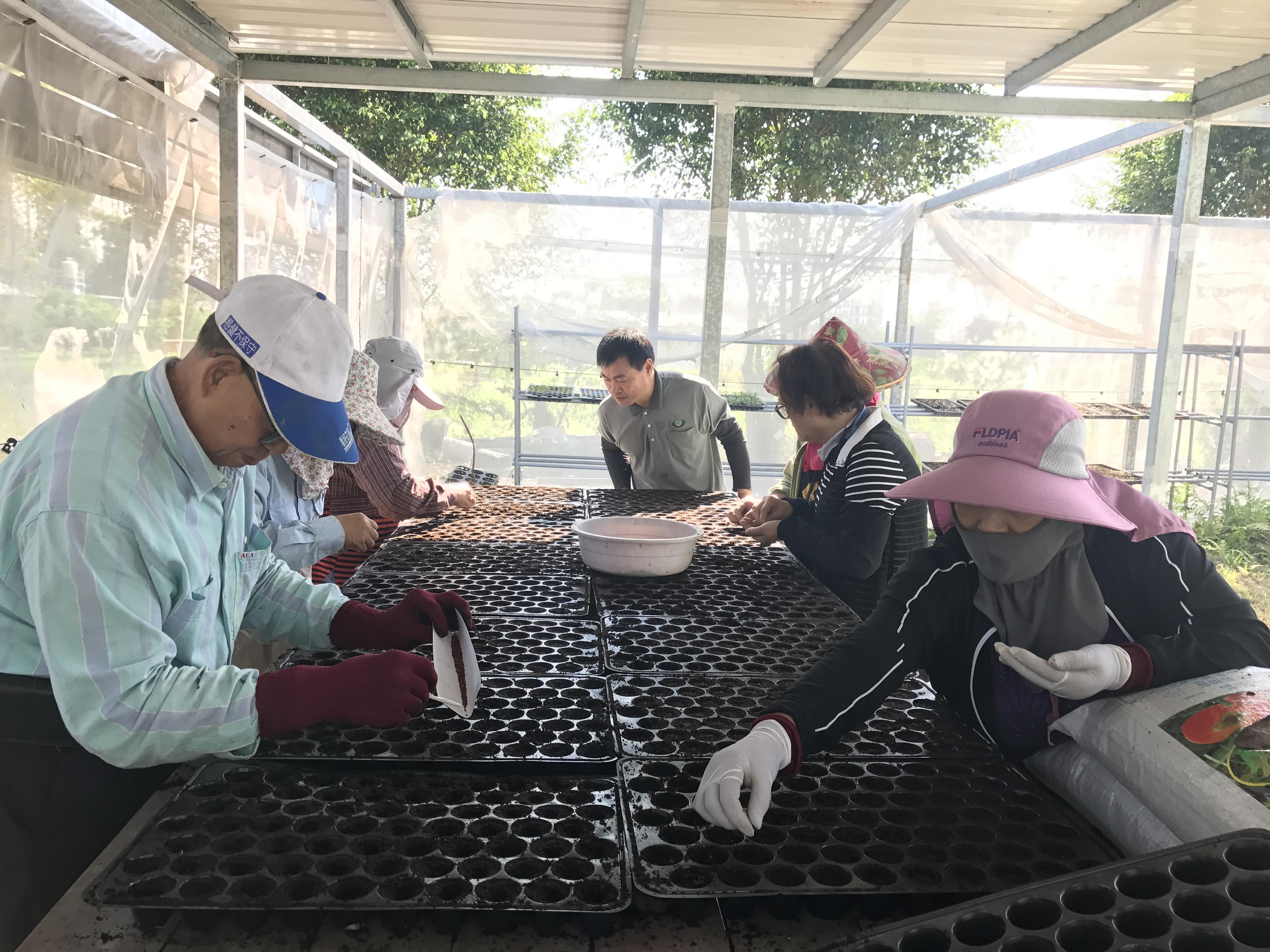 與地方政府協力輔導聚落紅藜栽培與相關加工技術訓練