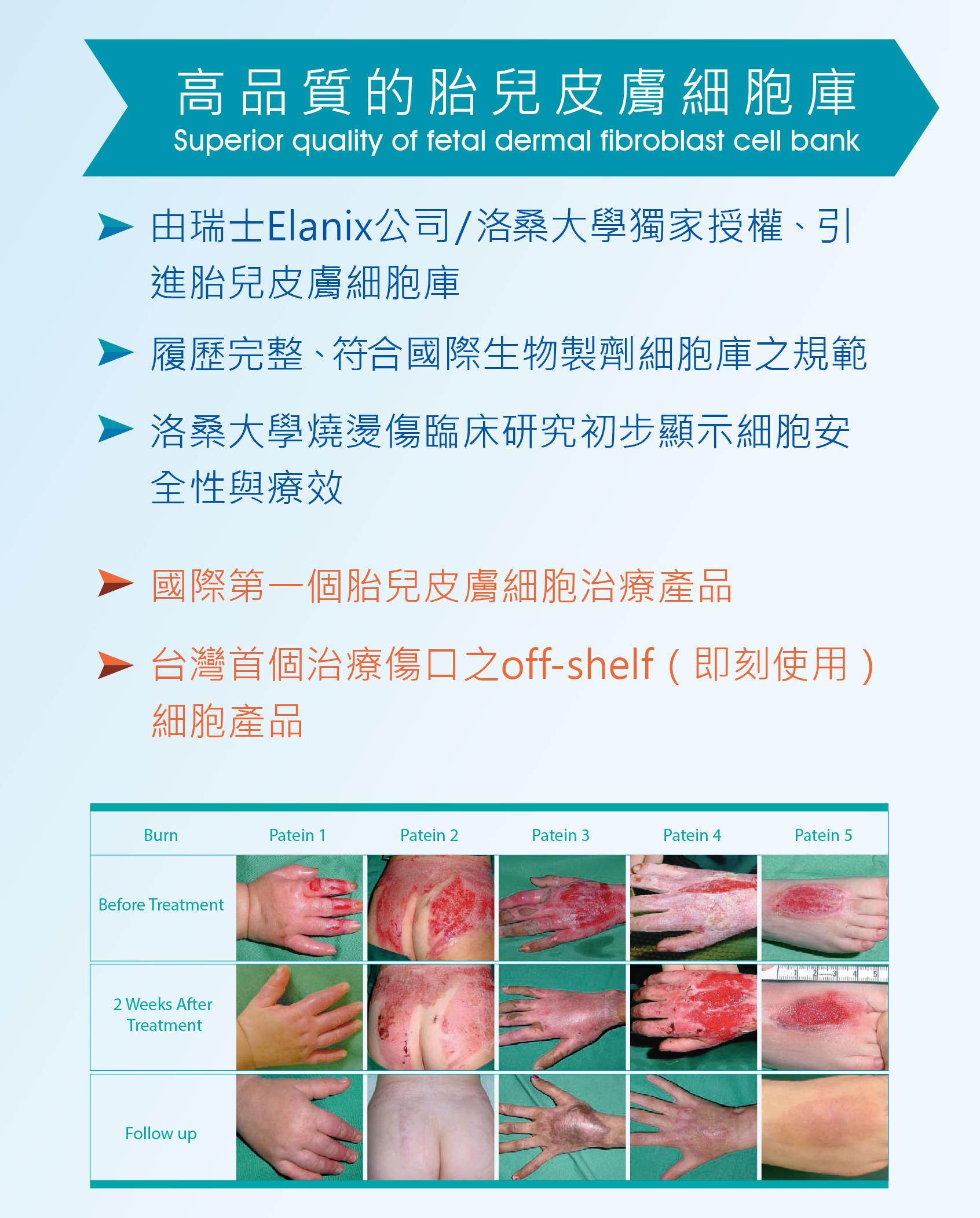 高品質的胎兒皮膚細胞庫