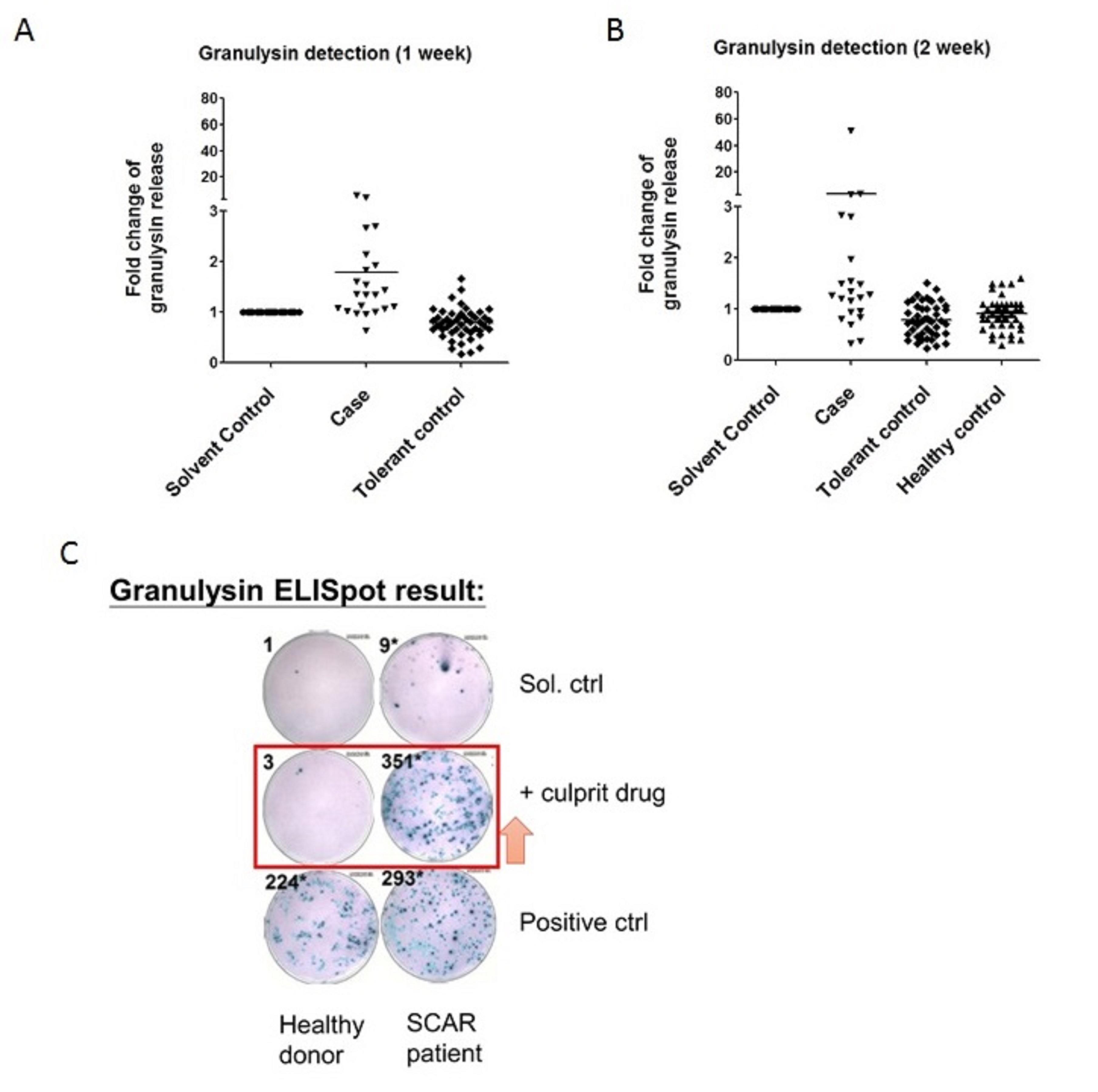 致敏藥物刺激活化細胞後測定顆粒溶解素表現量結果