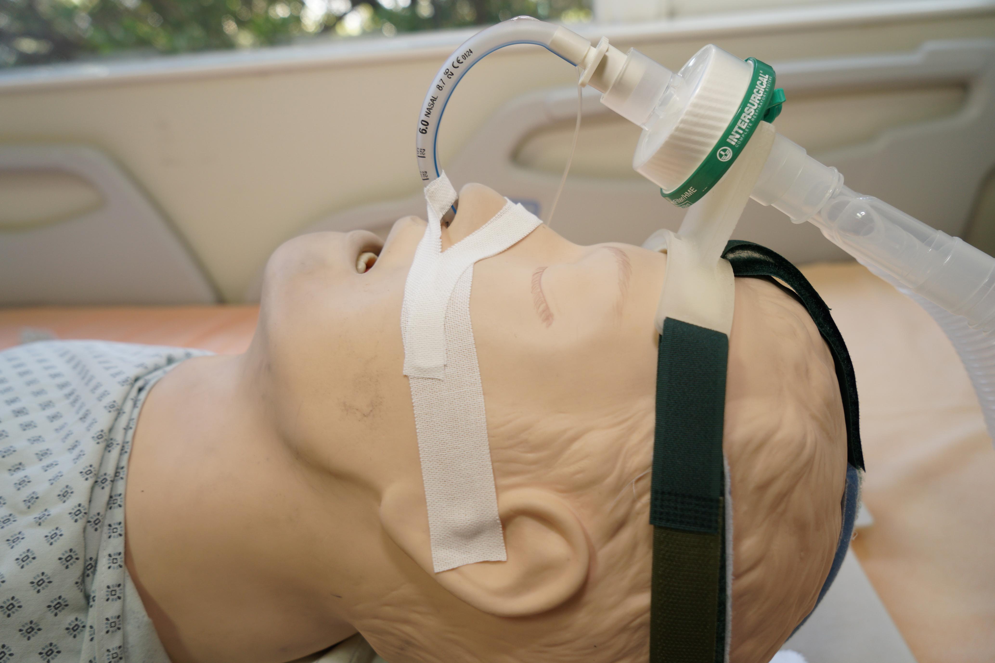 經鼻氣管插管固定架使用情形