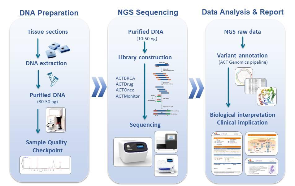 檢體處理與核酸萃取、次世代癌症基因檢測、數據分析與臨床報告