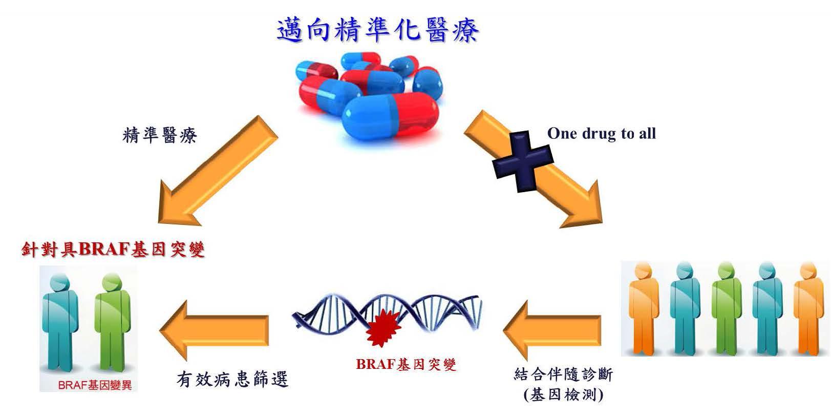 以精準醫療藥物開發模式,提供具BRAF基因變異之病患用藥新選擇