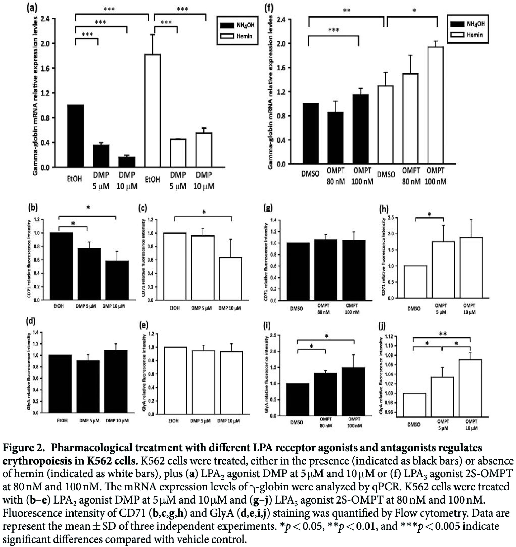OMPT(LPA受器三型促效劑)影響血球分化
