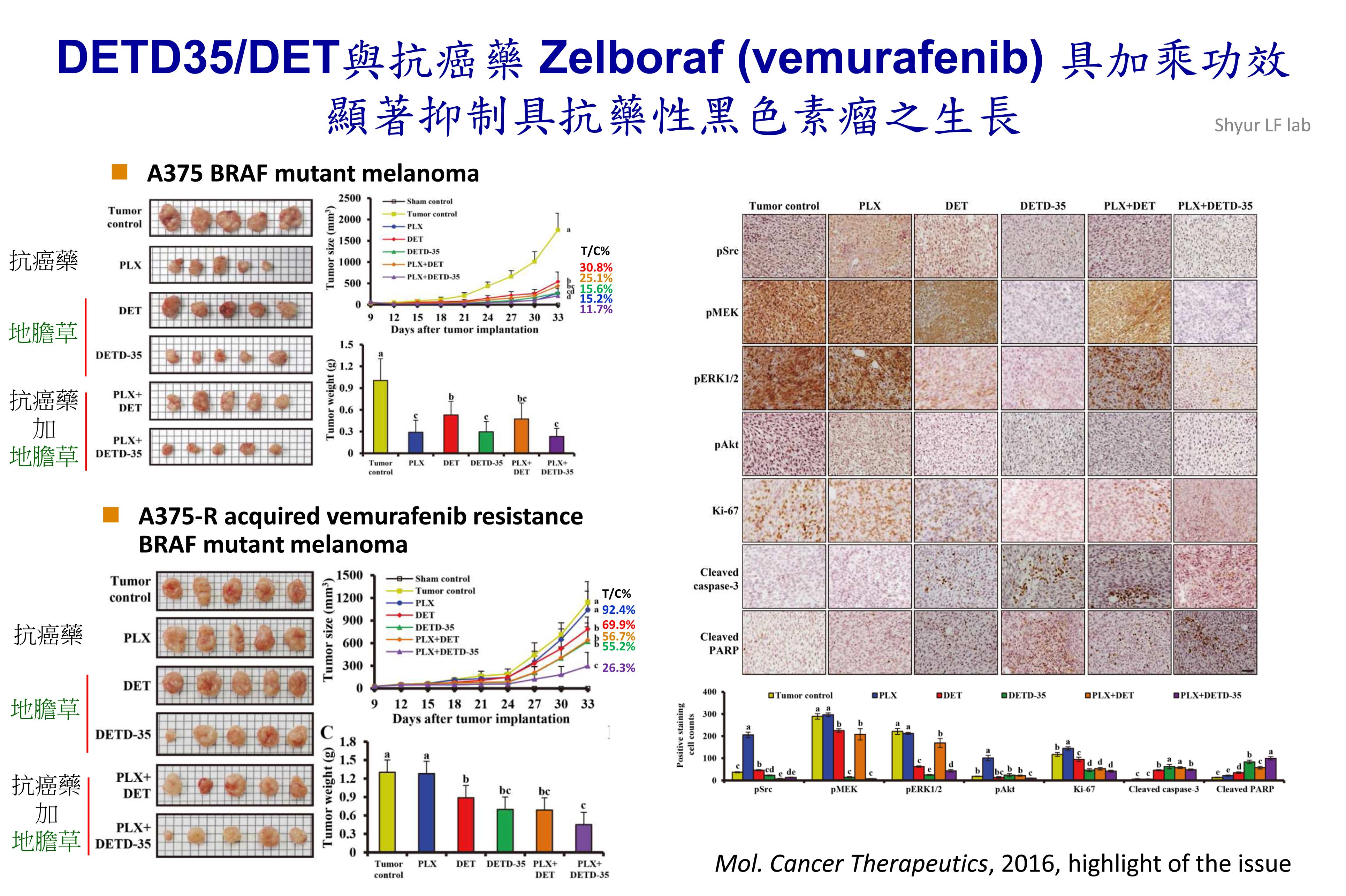 DETD35/DET與抗癌藥 Zelboraf (vemurafenib)具加乘功效並顯著抑制具抗藥性黑色素瘤之生長