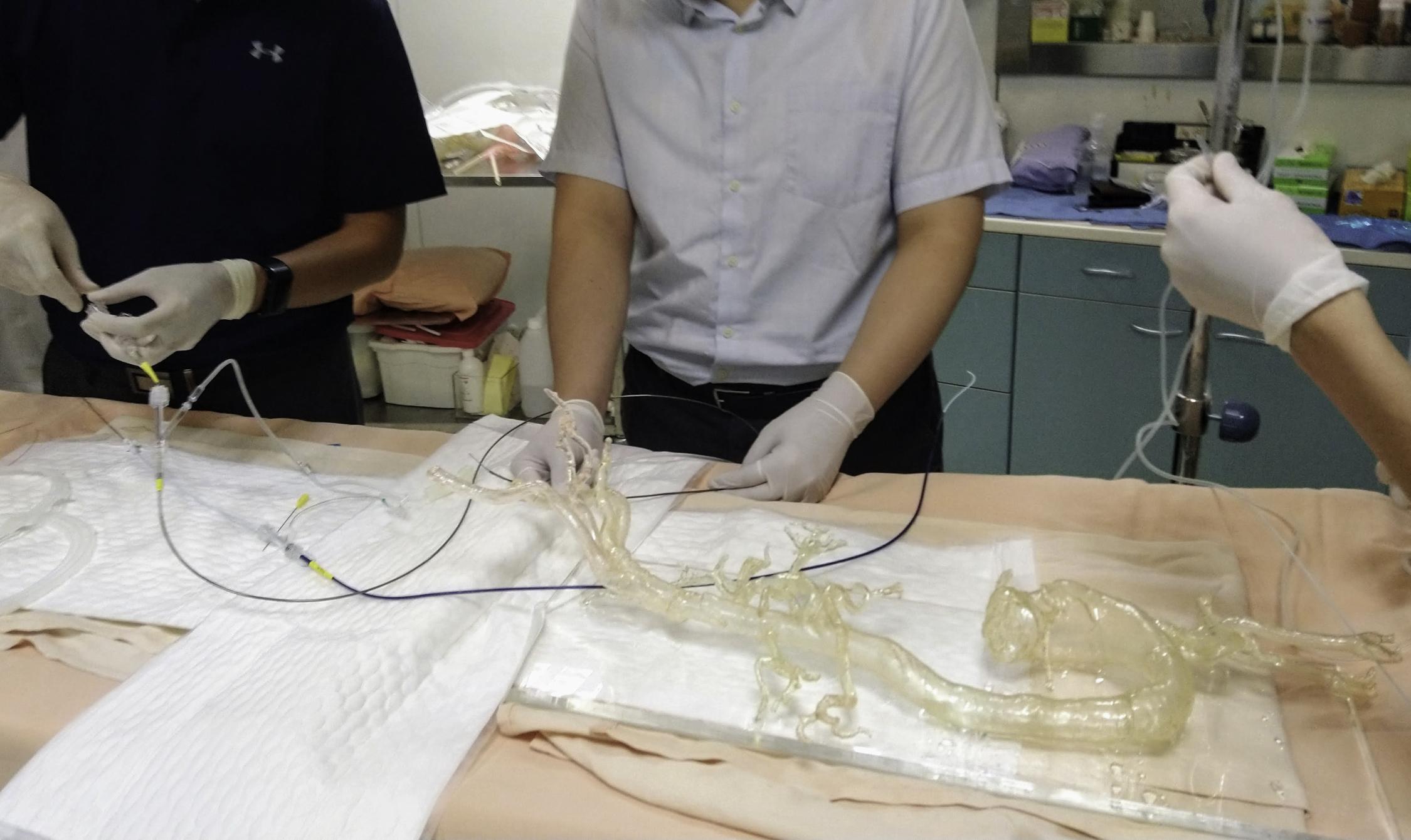 擬真血管模具操作圖示