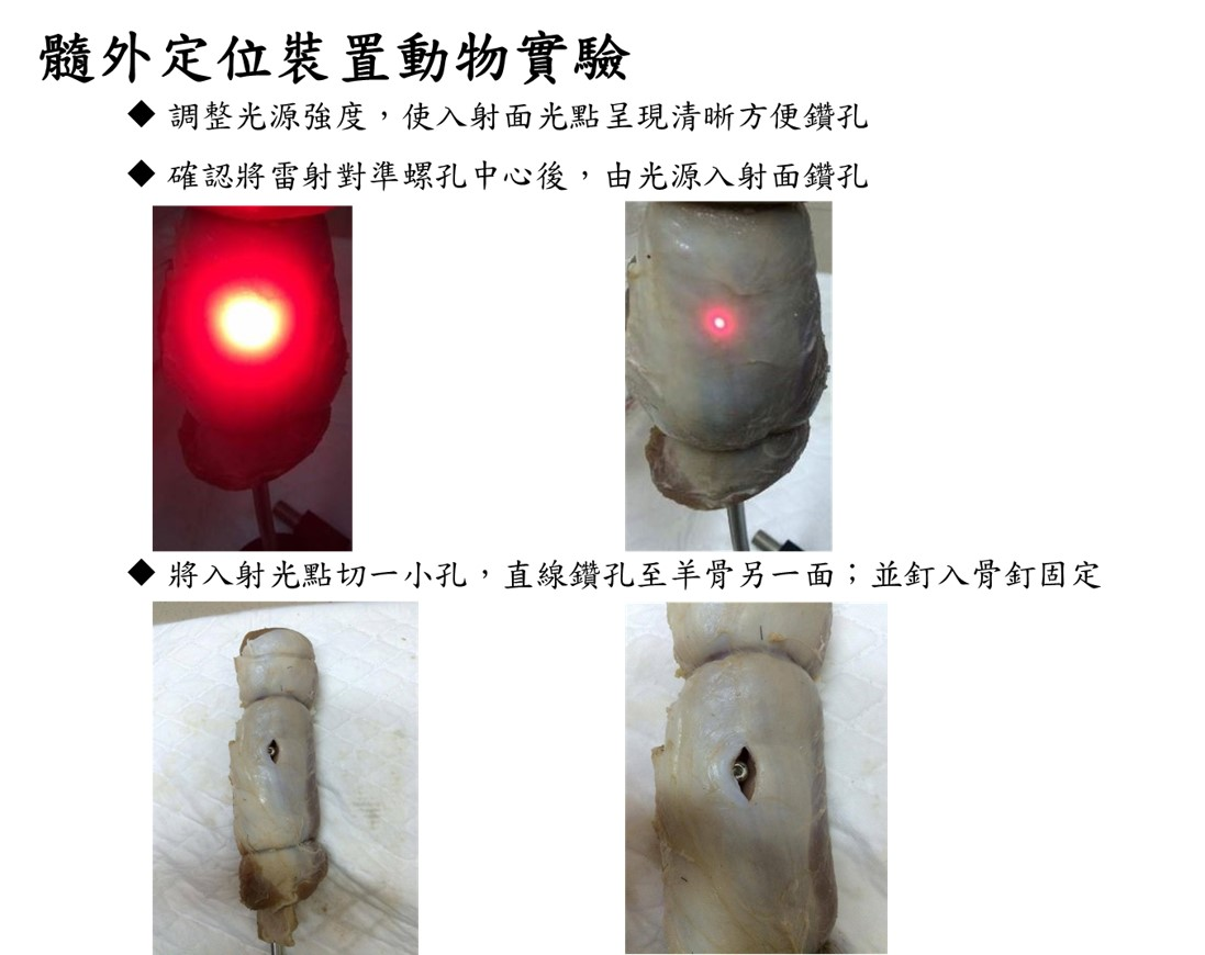 髓外定位裝置動物實驗