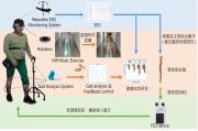 新世代下肢復健系統的整體架構圖