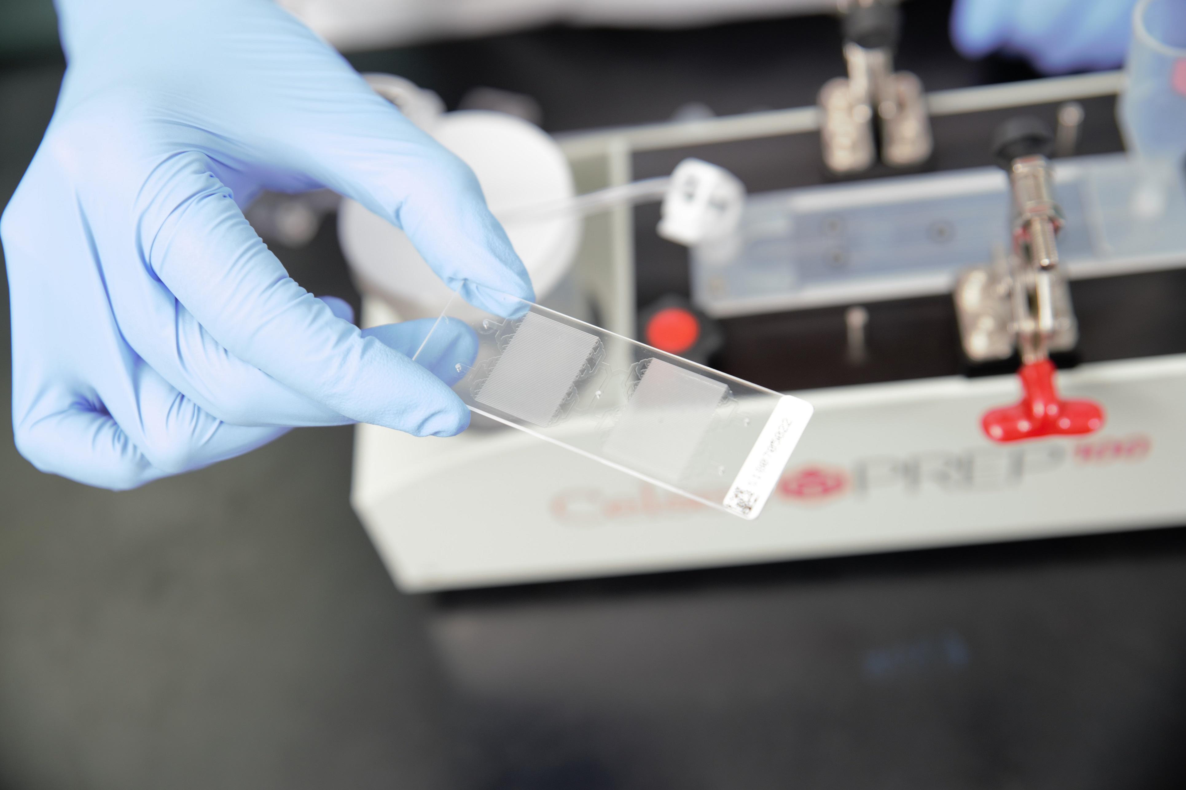 循環腫瘤細胞分析系統-CTC循環腫瘤細胞檢測