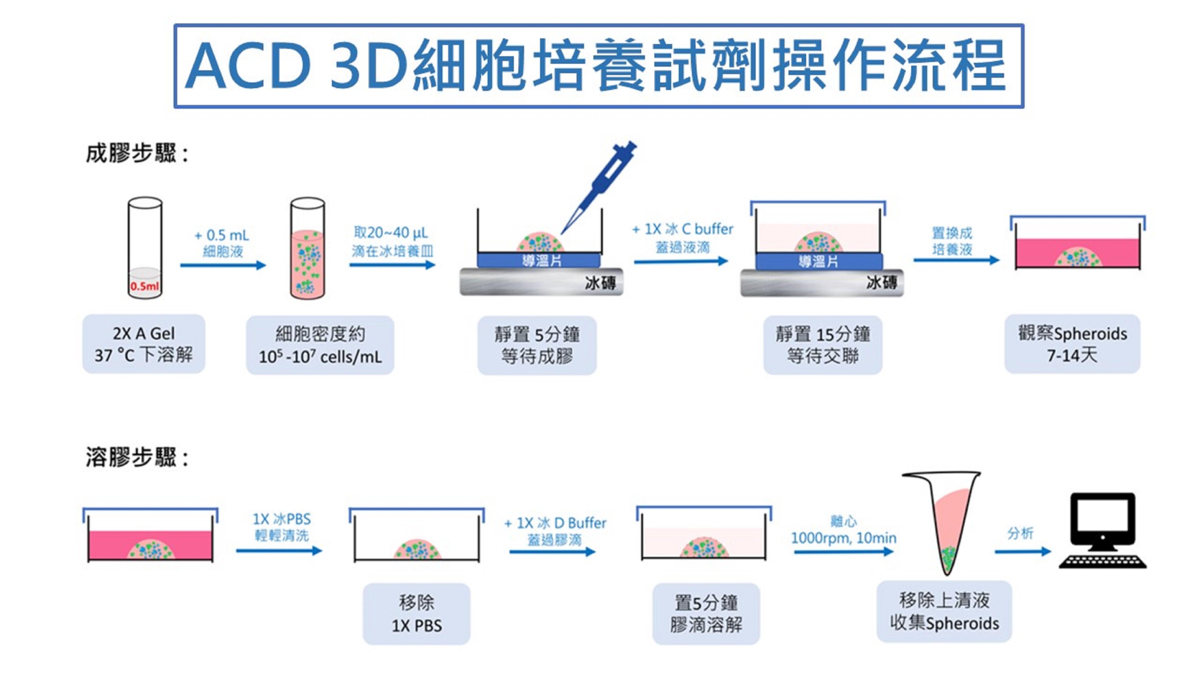 ACD_3D細胞培養試劑操作流程