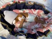 保溫減壓嬰幼兒氣墊式窩巢 第三版
