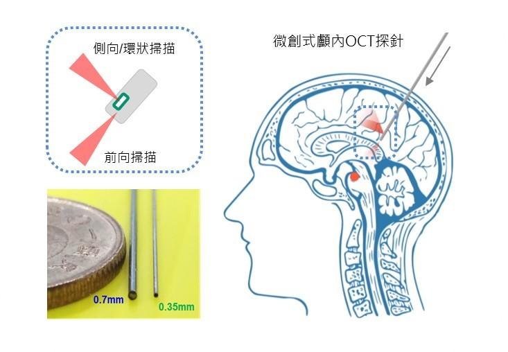 微創式顱內OCT影像探針