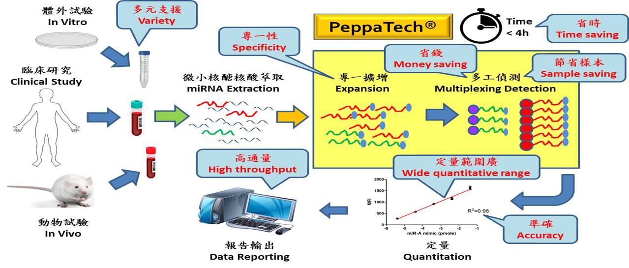 PeppaTech技術應用流程圖